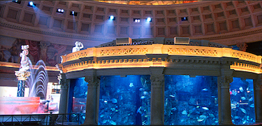 Aquarium at Fall of Atlantis