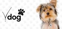 Vdara is Vdog dog friendly
