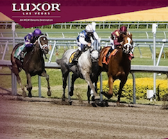 Racing horses at The Race & Sports Book in Luxor Las Vegas