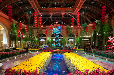 Conservatory Botanical Gardens At Bellagio Free Attraction